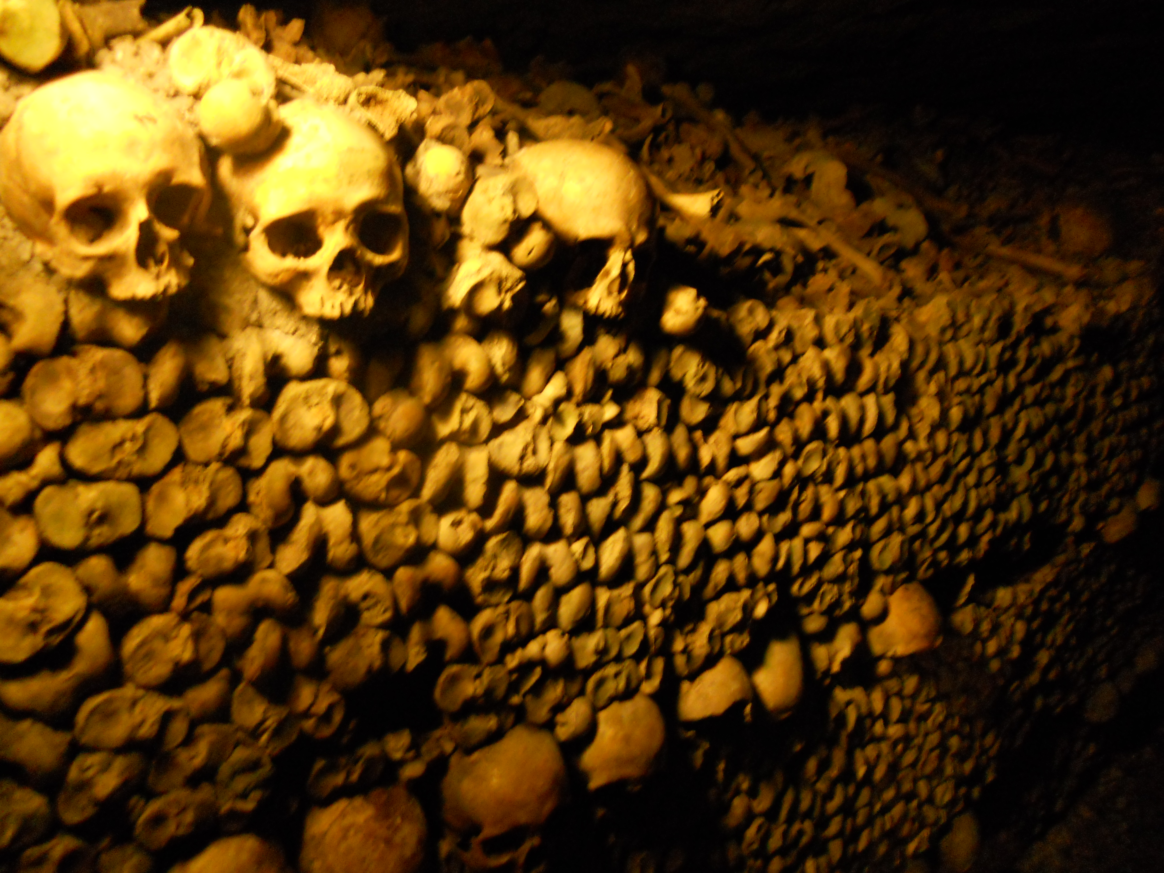 Guided tours of the French catacombs