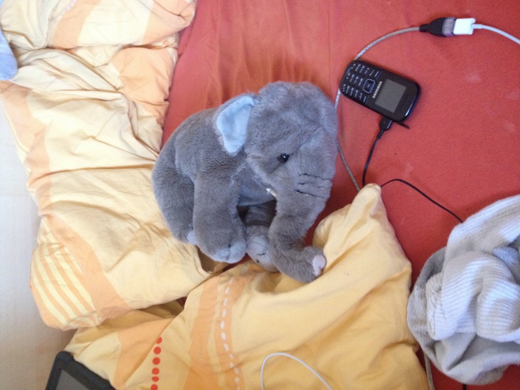 Though the socks and the phone aren't particularly special to me, I use them almost as often as the elephant. Peanut, by the way, is it's name. Of course it has a name. Because I'm grown up, I now get to decide what that means. If you're reading this, that statement applies to you too.