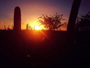 The beautiful sunset over the Mahangu