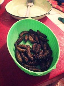 Oh and I ate some worms too.