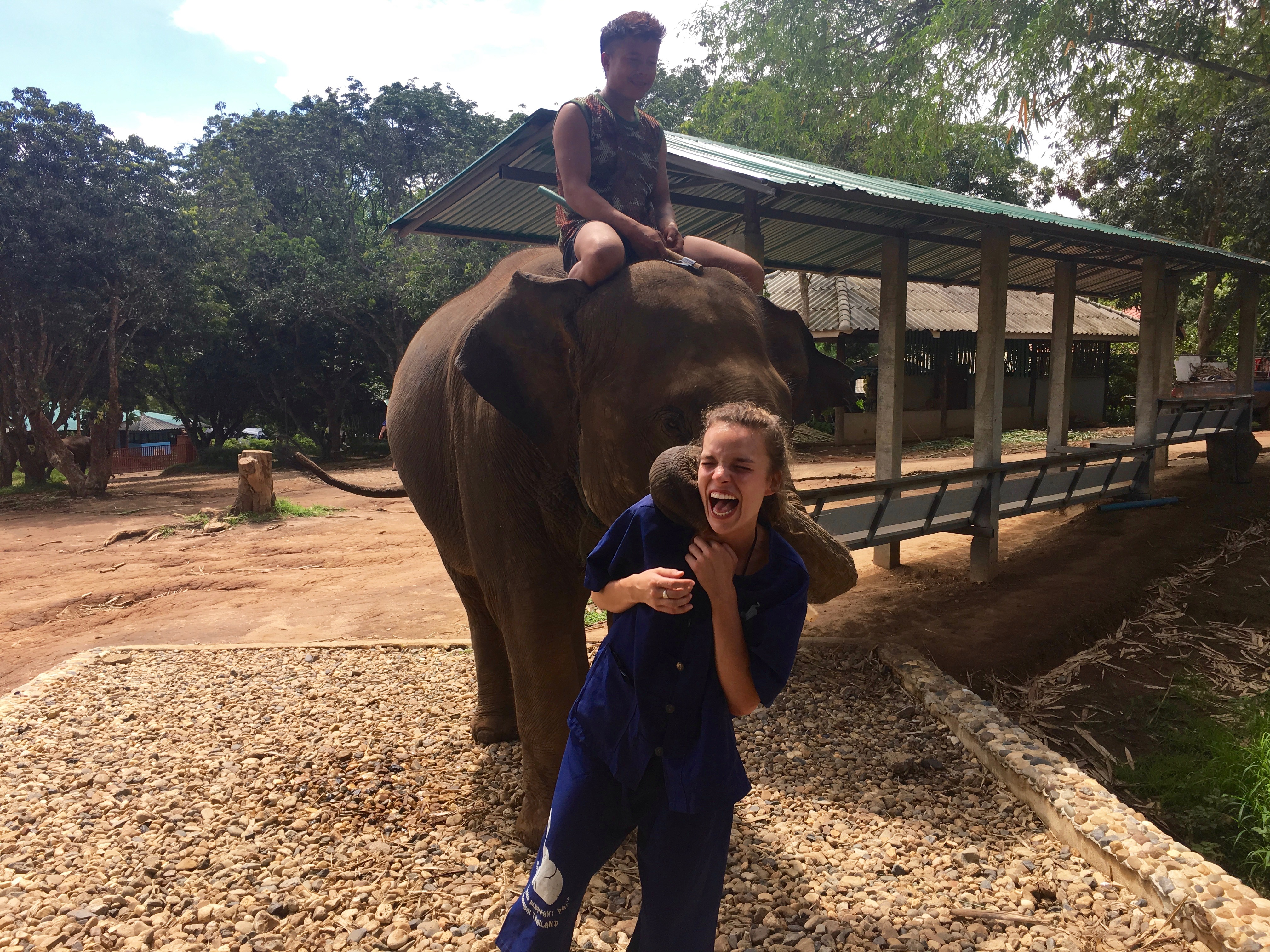 Ellie and Elephant