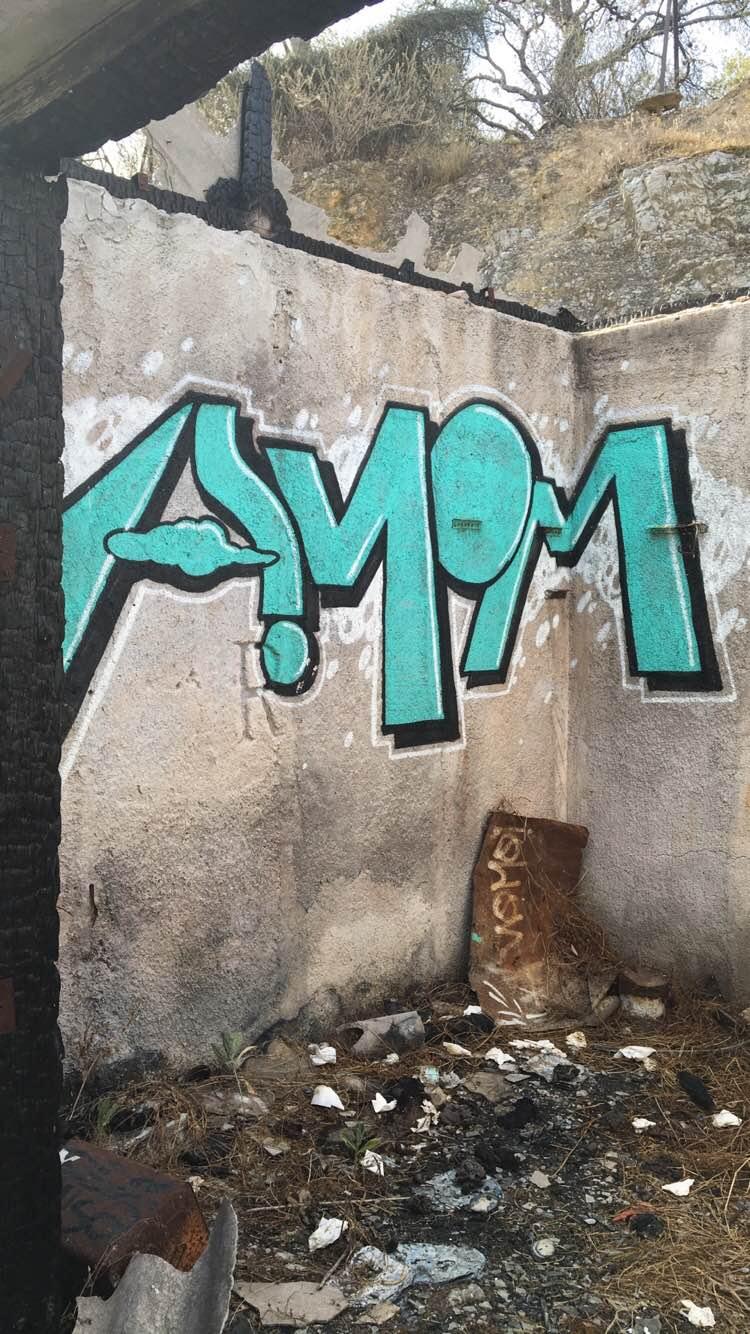 Graffiti and political unrest valpo voyager graffiti 4 biocorpaavc